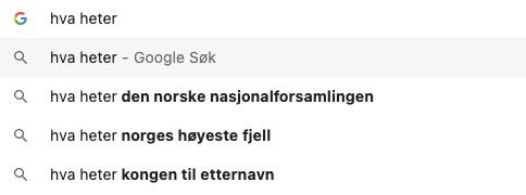Google søk norsk