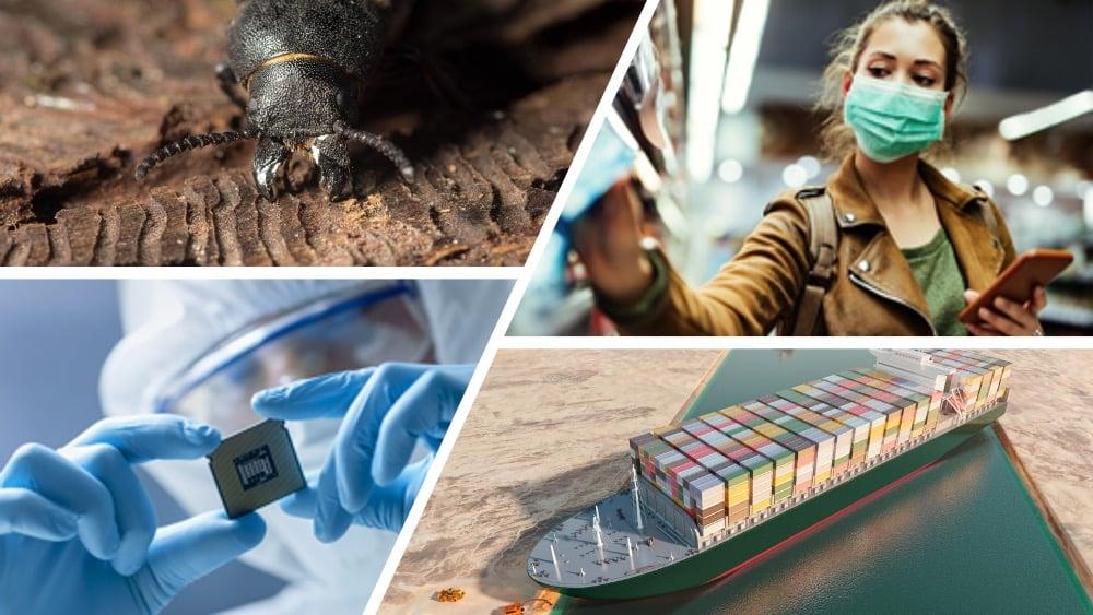 Barkbiller, microchip-krise og «containergate»